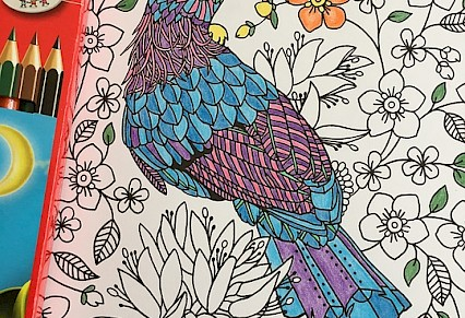 Adult Colouring Group